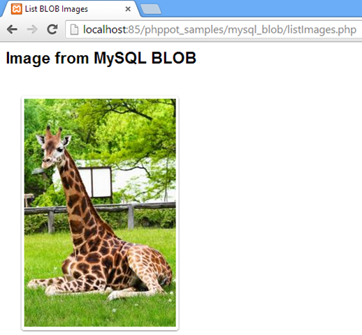 MySQL BLOB using PHP - Phppot