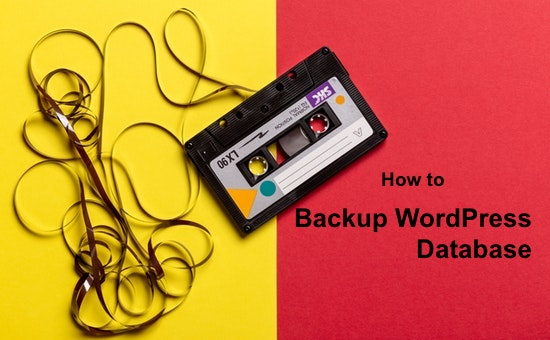 How to Backup WordPress Database