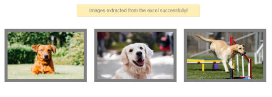 Extract Images from URL from the Excel Output